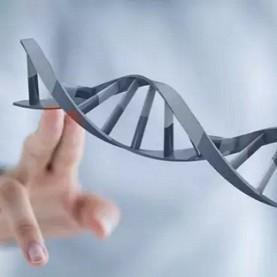 基因,大连家政,大连爱恩,检测