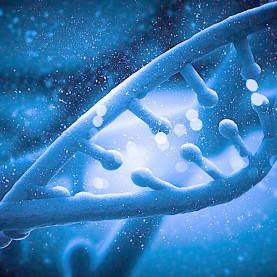 基因,大连家政,大连爱恩,央视,检测